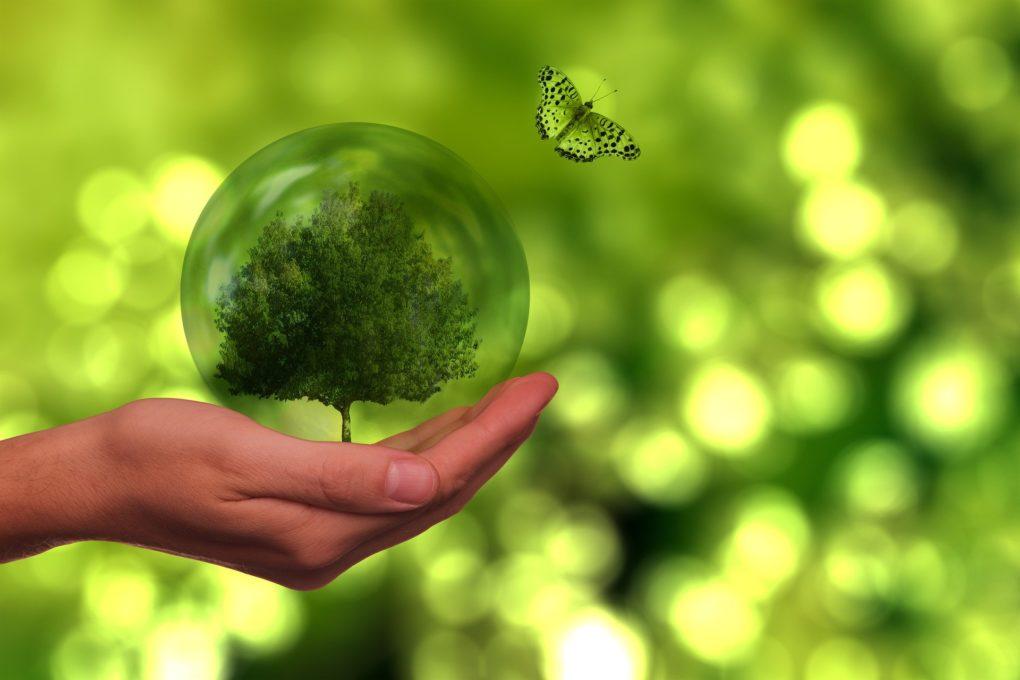 Bonos Verdes Finanzas Sostenibles